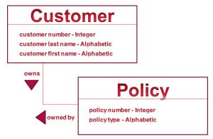 Customer and Policy with attributes