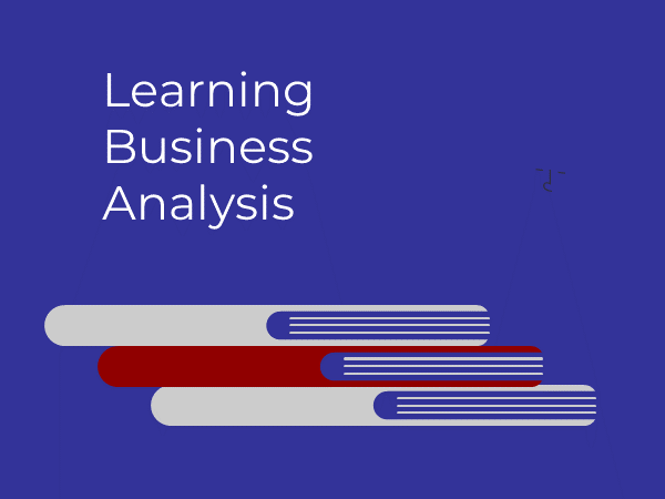 Learning business analysis